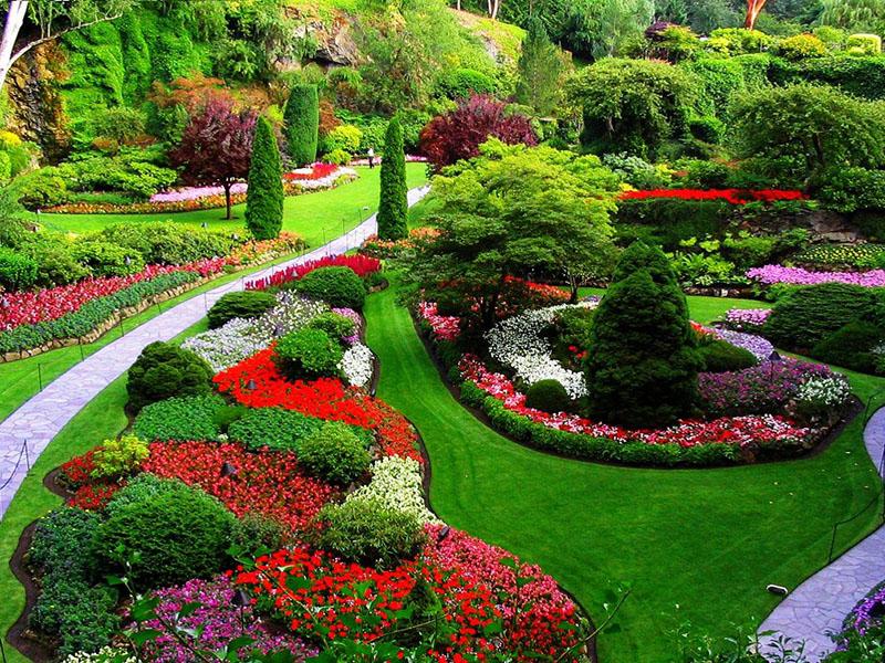 Limpiezas Sanaza Zaragoza - jardines