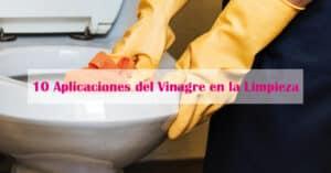 10 Aplicaciones del Vinagre en la Limpieza
